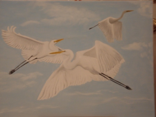 Flying Egrets